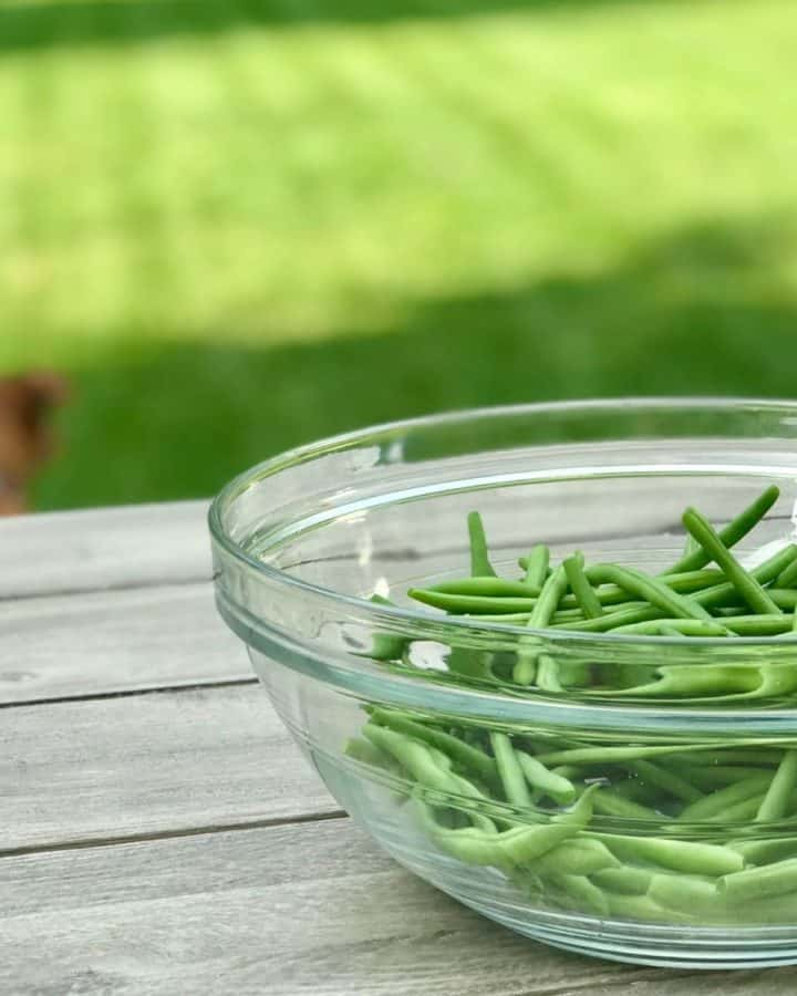 glass bowl of fresh green beans on picnic table